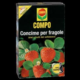 Compo Fragole da 1 Kg