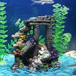 Decorazione Colonne Romane con Coralli