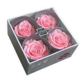 Rosa Stabilizzata PREMIUM Rosa pastello Diam. 8 cm  Confezione 4 pz